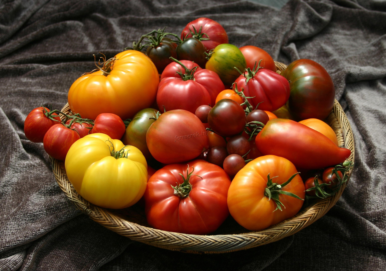 Разные сорта томатов в миске