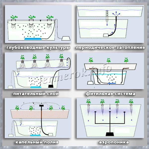 Гидропонные системы своими руками