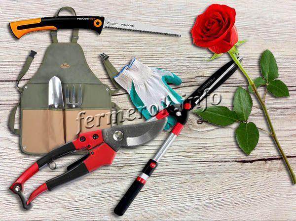 Фото садовых инструментов для обрезки роз