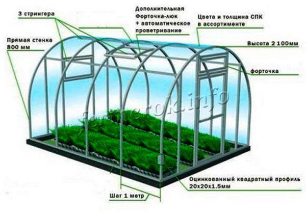Схема устройства теплицы для выращивания зелени