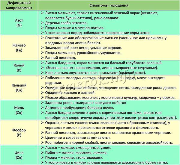 Дефицит микроэлементов и симптомы голодания