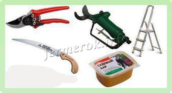 Инструменты для обрезки персика