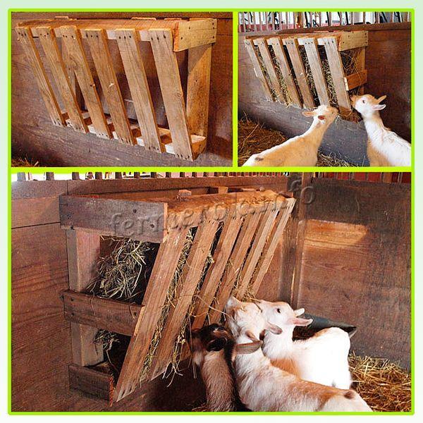 Кормушки для коз под сено сделать не трудно