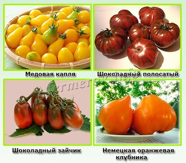 Сладкие сорта универсального типа выращивания