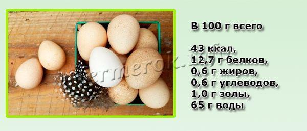Состав яиц цесарки